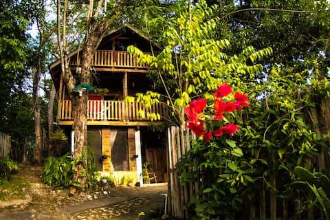 Casa Colocha Kat room