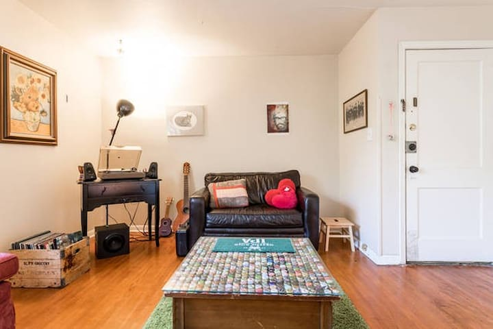 Pull-Out Couch in cozy apt; Close to Downtown - Austin - Apartmen