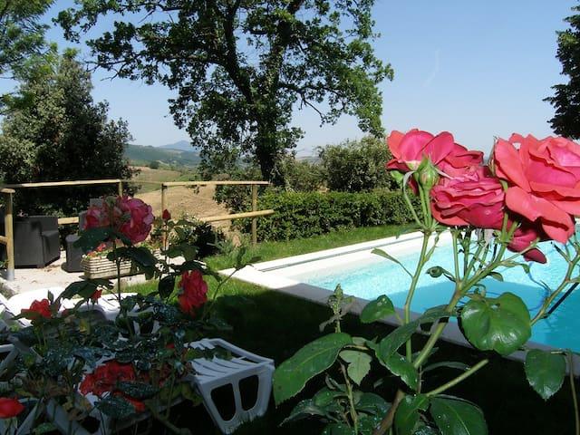 Campitelli - Bed&Breakfast - farmhouse - Allerona