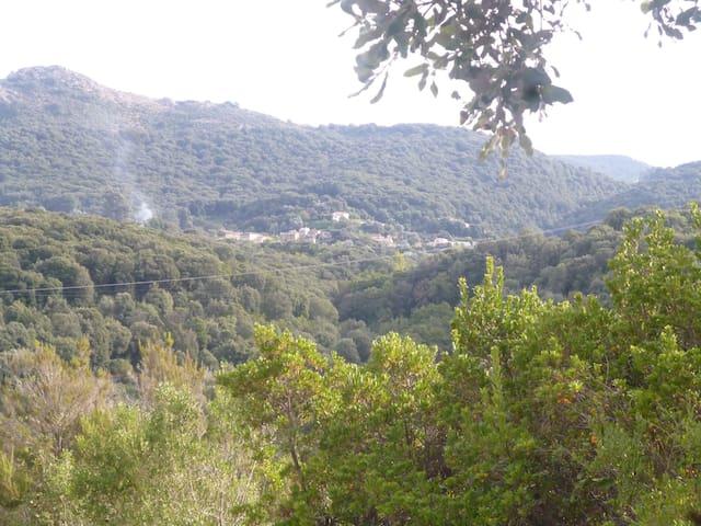 maisonnette entre mer et campagne - Eccica-Suarella