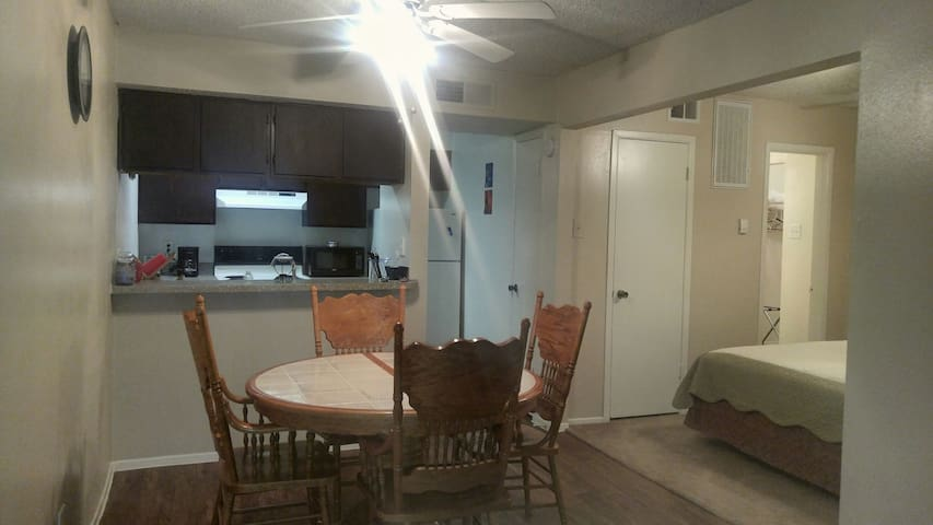 Roomy Studio - Walk to Cowboys, Rangers, Six Flags - Arlington - Apartament