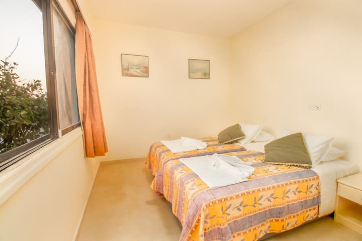 Cozy  spacious one bedroom apartment 5
