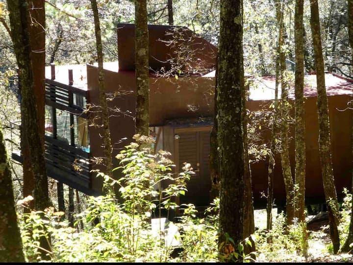 Cabaña minimalista en el bosque.