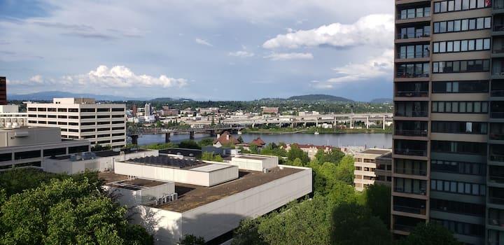 Beautiful Downtown View Condo!