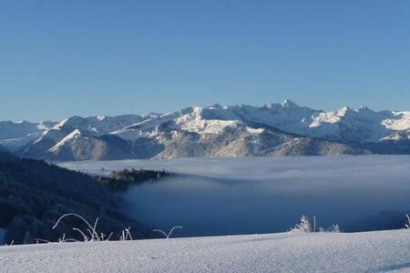 Appart 4/6 PERS à Ignaux vue sur la montagne