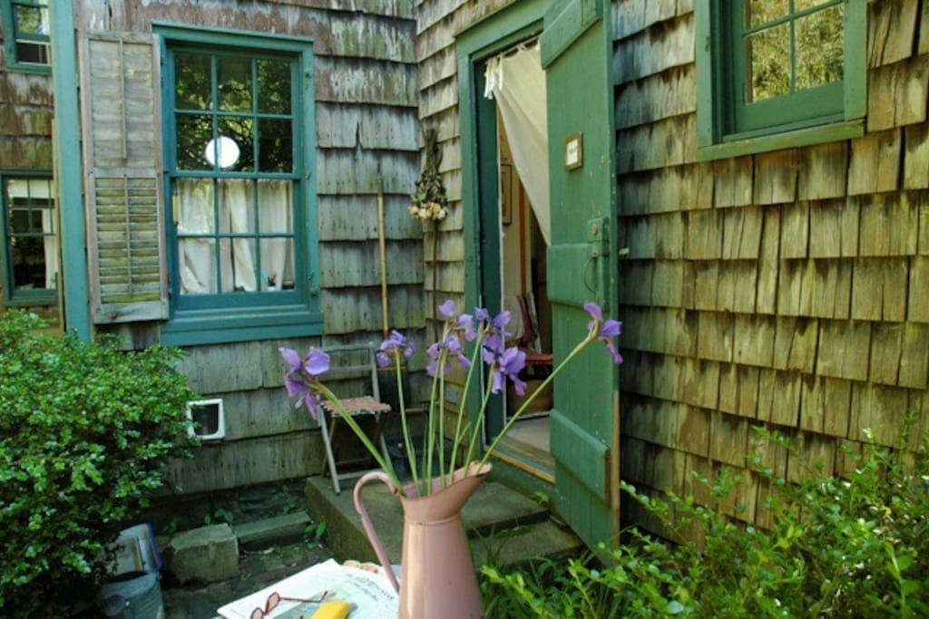 Blakesbb.com garden