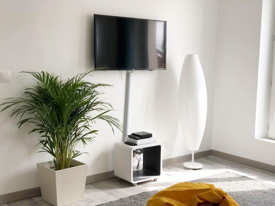 Télévision écran Plat avec Netlfix