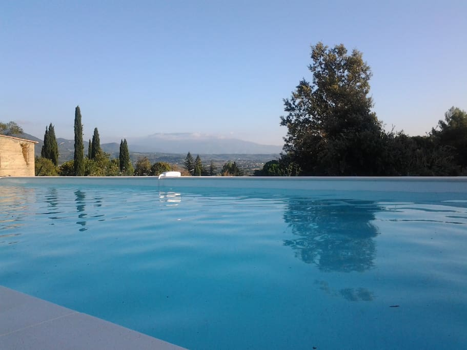 Piscine avec vu sur le Mont Ventoux