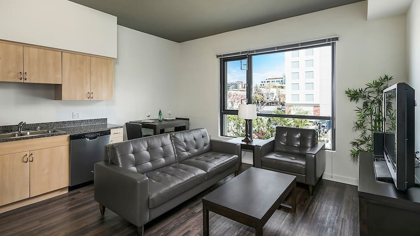 1BD condo in San Diego, professional cleaning