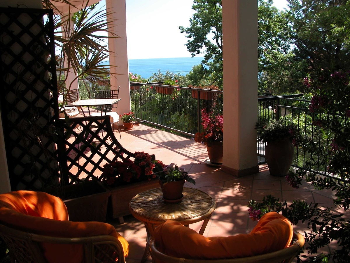 How much is a house in Maratea