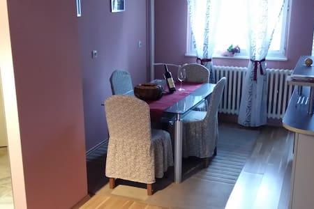 2 bedroom apartment 78m2 ( City center) - Banja Luka