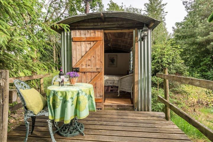 Bluebell - Cosy traditional shepherd hut