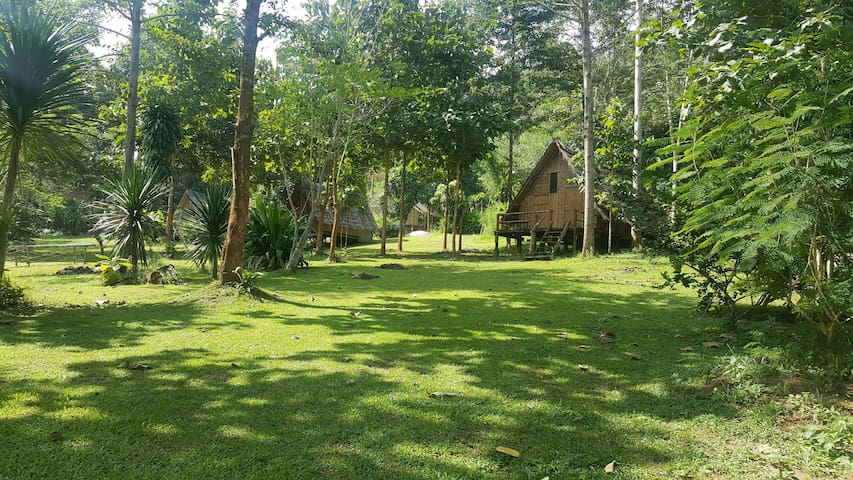 Bamboo Country Lodge - Amphur Maetang - Daire