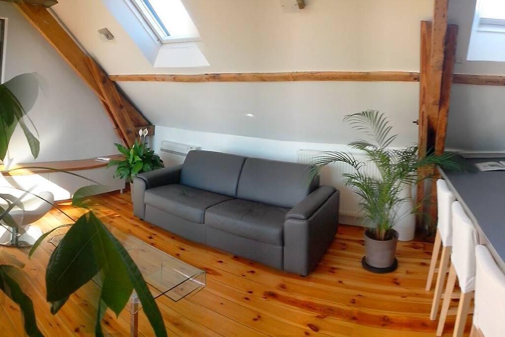 Loft 224 1min De La Gare Apartments For Rent In Angers