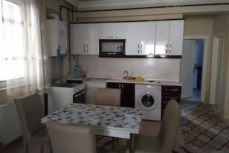 Apartment flat with local guide and tour