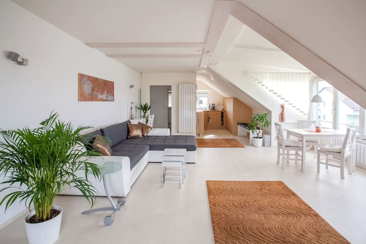 Large, modern roof comfort apartment, quiet
