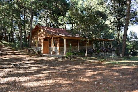 Cabaña Casa San Pablo