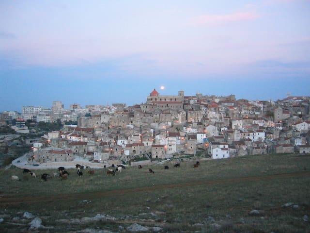 Charme and sea - Vico del Gargano - Apartment