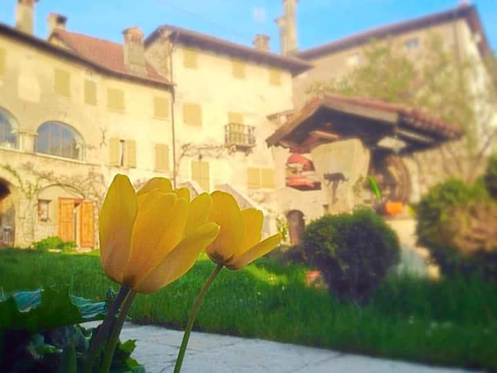 Villa Francescon, Borgo val Belluna, Dolomiti