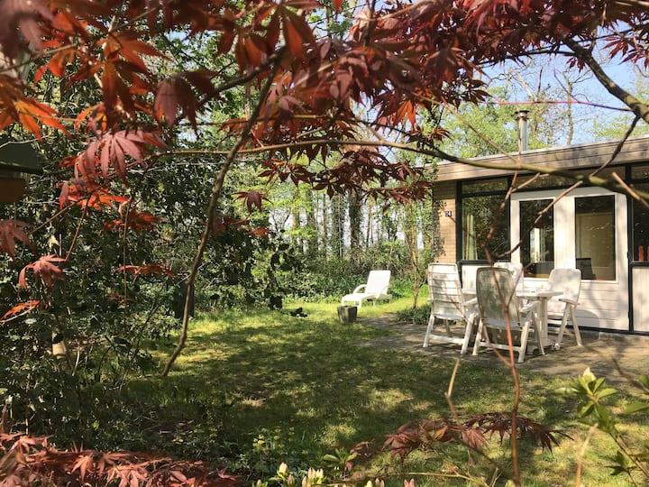 Gezellig vakantiehuis in het bos