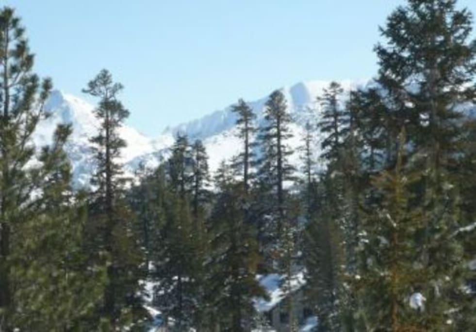 Mountain View 8-)
