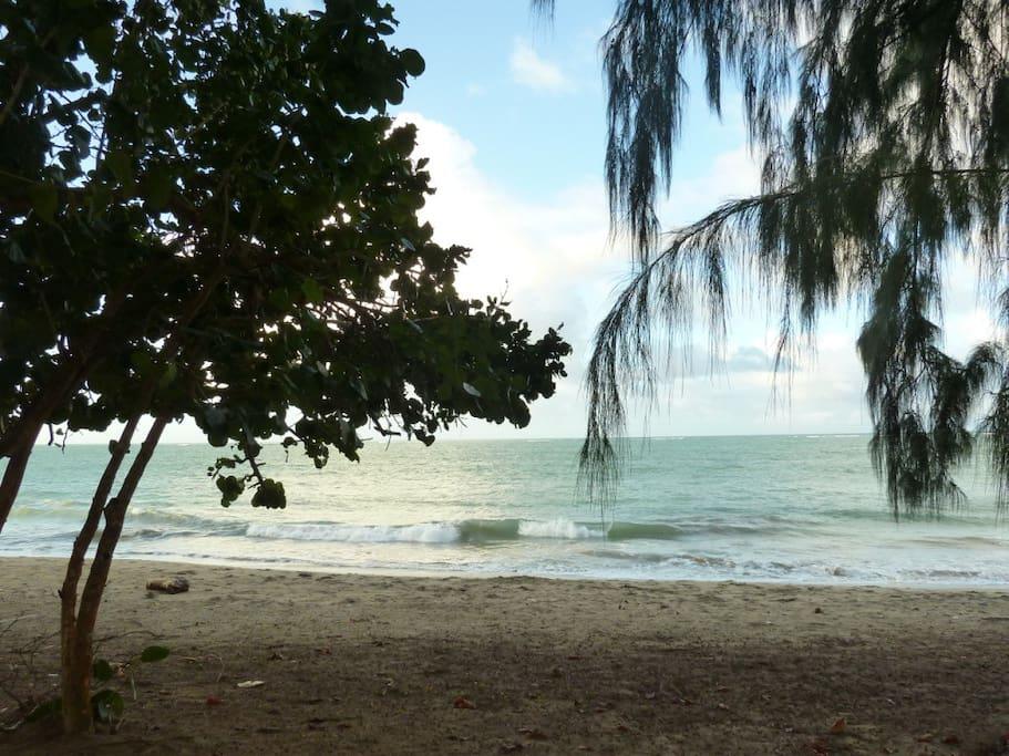 Inspiring and warm Caribbean beach location!