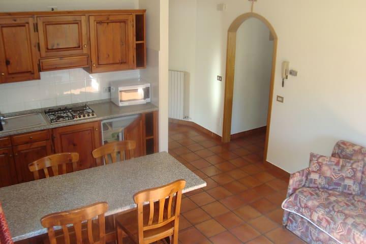 LIVIGNO Appartamento bilo 1 - Livigno - Appartement