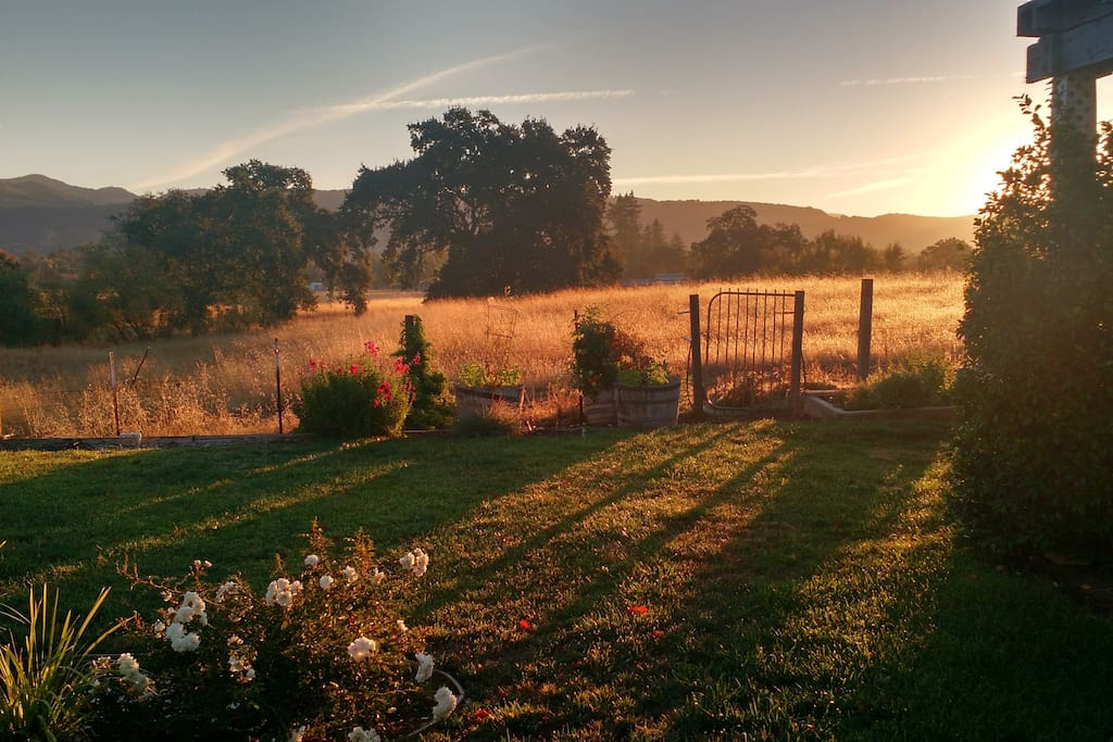 Enjoy sunrise over the Sonoma Valley while eating breakfast on the back patio.