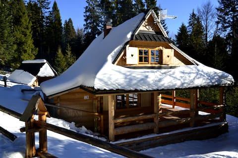 Holzhaus im Gebirge