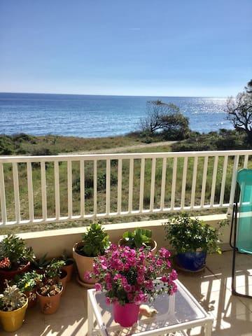 Sur la plage vue mer 4 pers confort - Santa-Maria-Poggio - Apartment