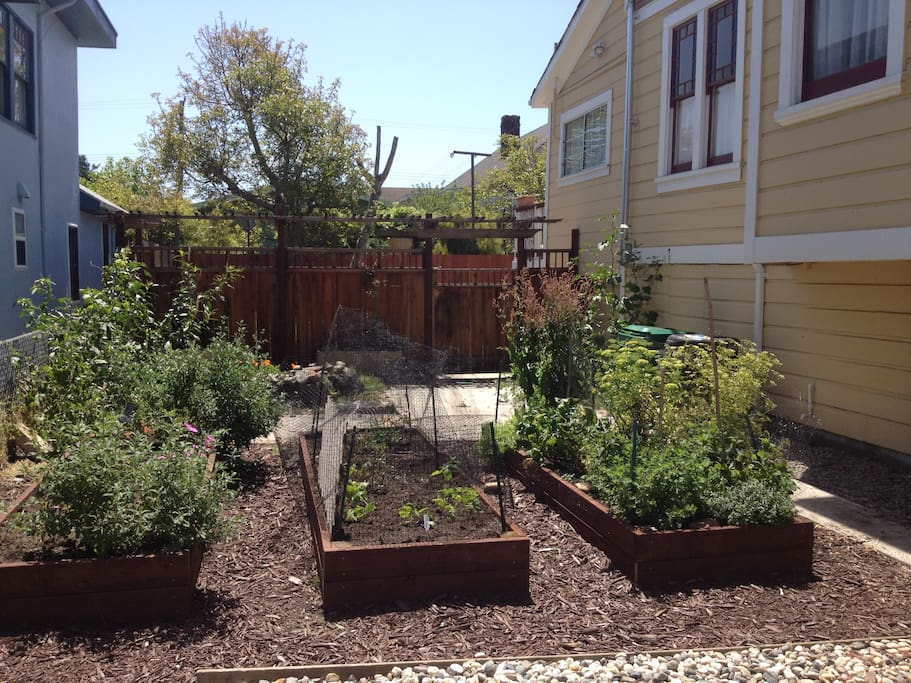 Walk past the garden beds and through the gate to your private apartment entrance.