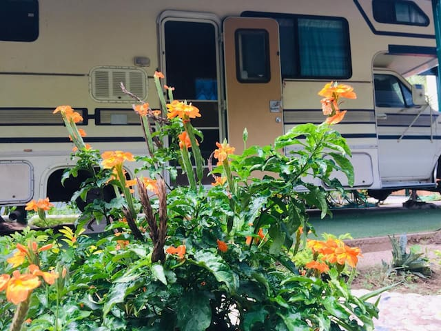 Casa móvil con alberca y hermoso jardín!