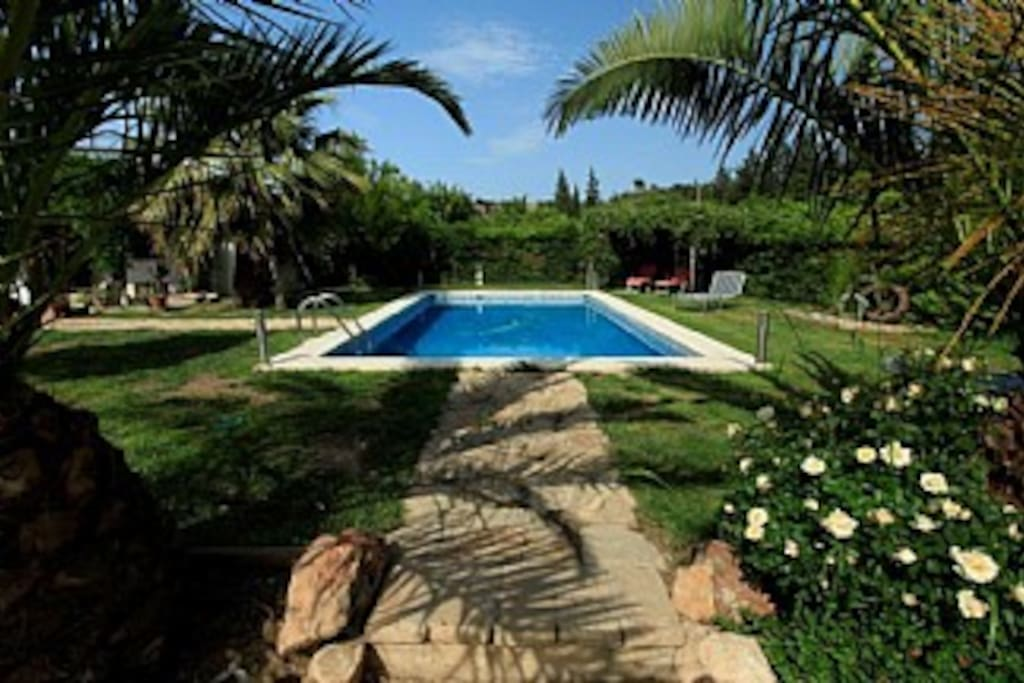 Exclusive use of the 8x4 meter swimming pool