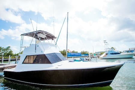 38' Custom Charter Boat - Do It All - George Town - Boot