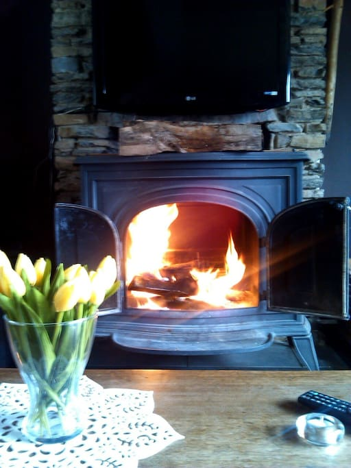 Notre feu ouvert;-) Our open fire, enjoy. Please try to find dry wood, it willbemuch better for you, envoy.