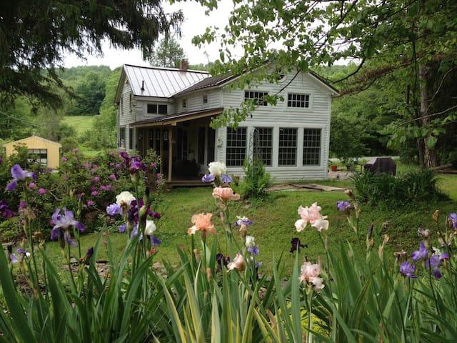 Irises and kitchen wing