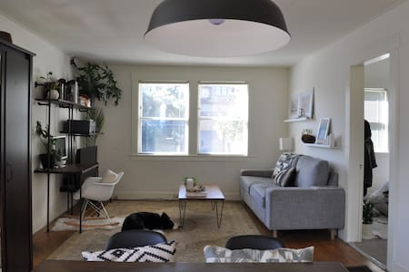 Modern comfy home and room for holiday - Albany - Huis