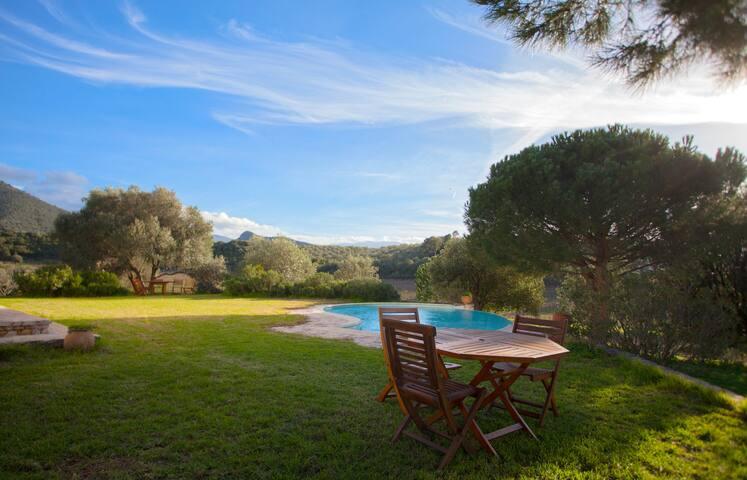 House in Vineyard Corsica - Saint-Florent - Ev
