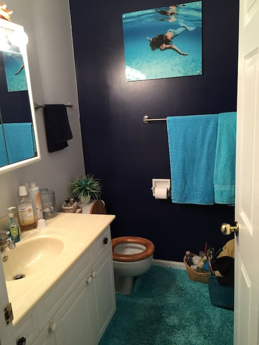 This is your bathroom, with shower and tub.