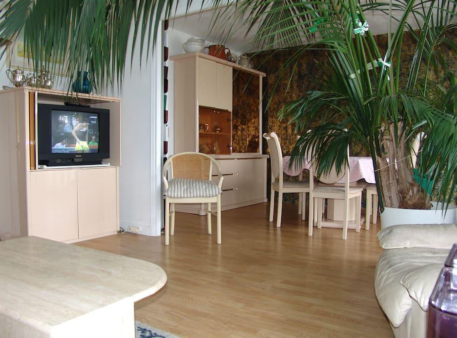Salon avec TV LED