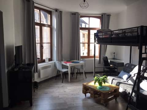 Appartement lumineux quartier VAUBAN à LILLE