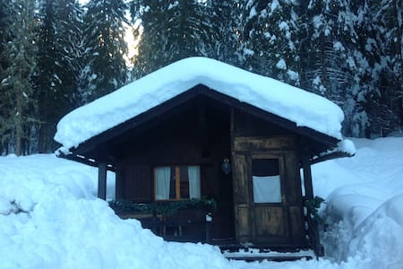 Wonderful chalet in the forest! - Malga Ciapela - Zomerhuis/Cottage