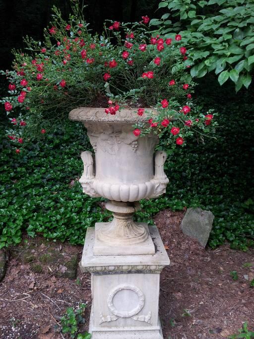 Interesting garden features
