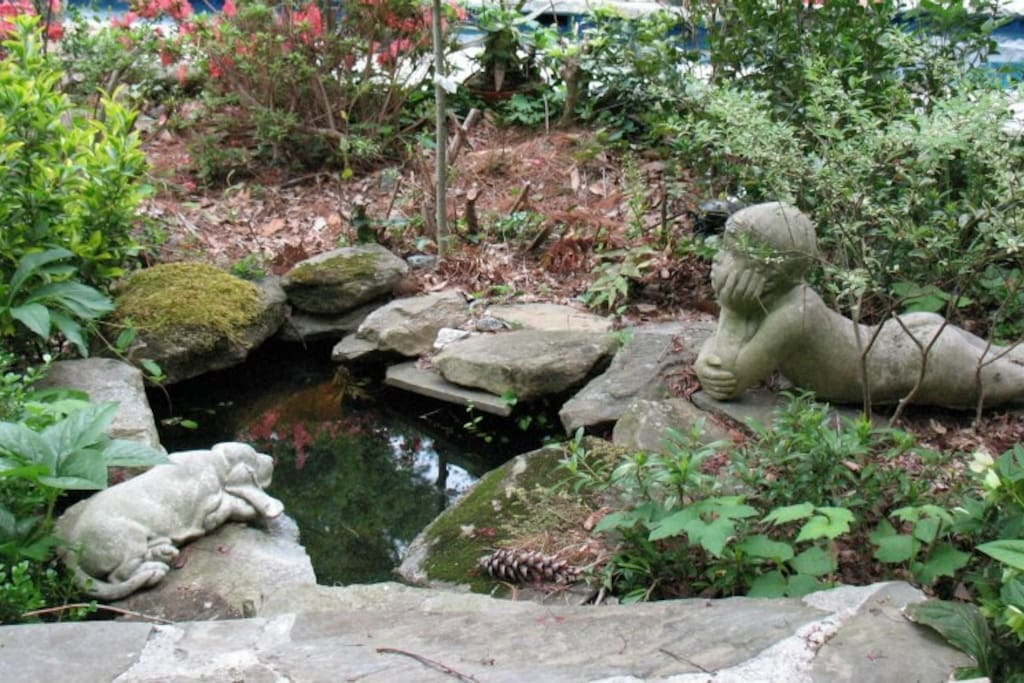 Sit by the fish pond