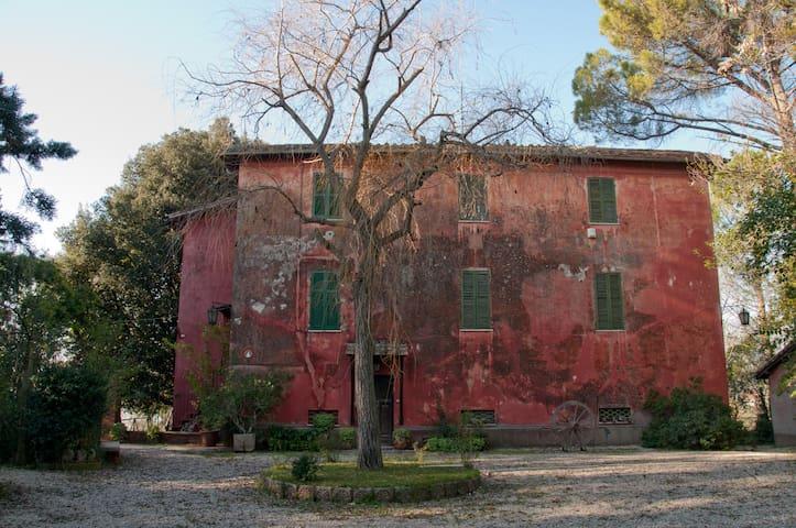 Affittasi casale - Terni - Villa