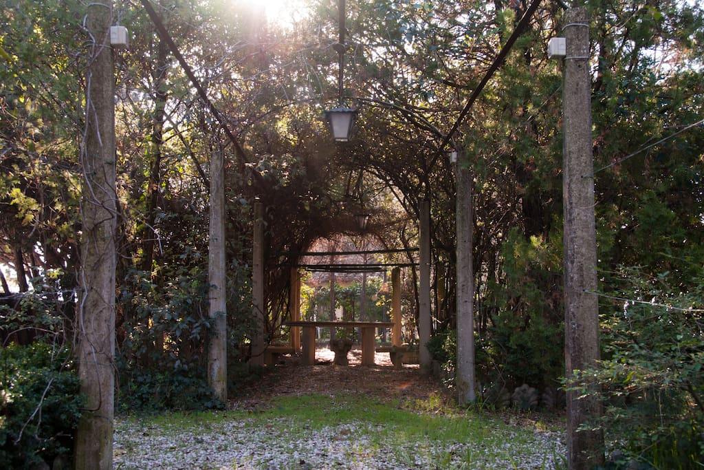 Il giardino in stile italiano (Garden in italian style)