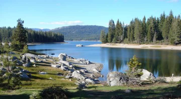 Cozy Mtn. Cabin, Shaver Lake, CA.