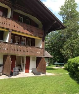 comfy home base in the mountains - Saanen - Apartamento