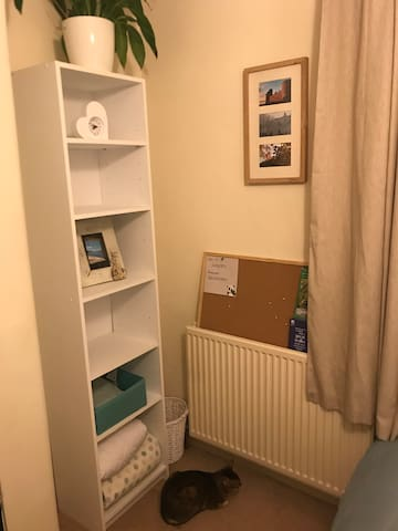 Central Windsor Double Room