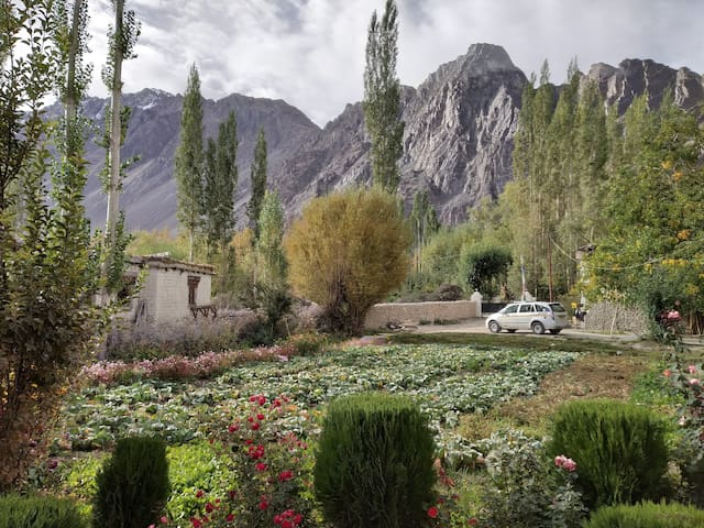 Your ESCAPE in Nubra Valley (Hunder)